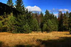 Autumn scenery in the Sumava Mountains, Stodulky, Czech Republic Royalty Free Stock Photography