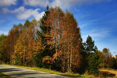 Autumn scenery in the Sumava Mountains, Stodulky, Czech Republic Royalty Free Stock Images