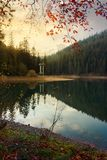 Autumn scenery of Synevyr lake. Gorgeous evening light stock photos