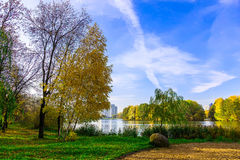 Autumn Scenery with Trees and Lake in the Urban Park Royalty Free Stock Image