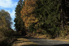 Autumn scenery in the vicinity of Hartmanice, Czech republic Stock Photos