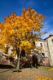 Autumn scenery in Vyborg, Russia Stock Photos