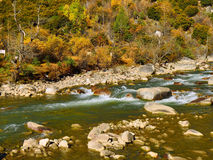 The autumn scenery of Yading Royalty Free Stock Photos