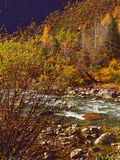 The autumn scenery of Yading Royalty Free Stock Photo