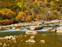 The autumn scenery of Yading Royalty Free Stock Photography