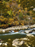The autumn scenery of Yading Royalty Free Stock Images