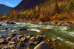 The autumn scenery of Yading Stock Photos