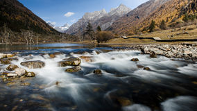 The autumn scenery of Yading Stock Image