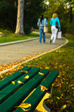 Autumn scenery, yellow leaves on a green bench in a park Stock Images