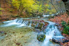 Autumn scenic landscape, mountain river in the autumn forest. In the mountains stock images