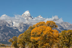 Autumn Scenic in the Tetons Royalty Free Stock Images