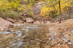 Autumn on the Scenic Virgin River Stock Images