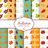 Autumn seamles backgrounds set Stock Images