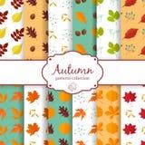Autumn seamles backgrounds set Stock Images