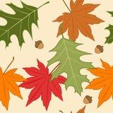Autumn seamless background Stock Photos