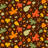 Autumn seamless background. Royalty Free Stock Photo