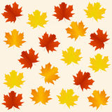 Autumn seamless background. With autumn leaves Royalty Free Stock Image