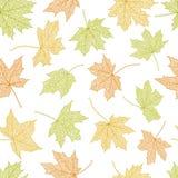 Autumn seamless background Royalty Free Stock Photo