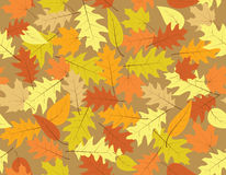 Autumn seamless background - fall colours Stock Images