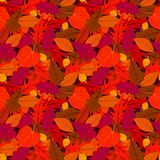 Autumn seamless background with leaves Stock Image