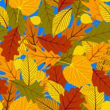 Autumn seamless background with leaves Stock Photos