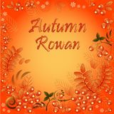 Autumn seamless background with ornament from leaves and berries of mountain ash. And field for text Royalty Free Stock Images