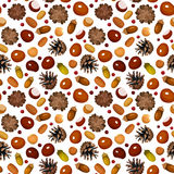 Autumn seamless background with various nuts. Autumn seamless pattern with chestnuts, acorns, cones, hazelnuts and rowanberries on a white background Royalty Free Illustration