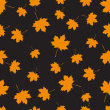 Autumn seamless background Royalty Free Stock Photo