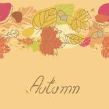Autumn Seamless Border. With leaves Stock Photo
