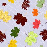Autumn seamless grunge pattern Royalty Free Stock Photography