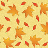 Autumn seamless pattern. Stock Photography