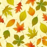 Autumn Seamless Pattern Imagen de archivo libre de regalías