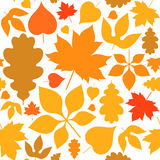 Autumn. Seamless pattern. Abstract leaves on white background. Autumn. Seamless pattern. Vector illustration (EPS Stock Images