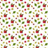 Autumn Seamless Pattern Background Colorful-de Dalingsseizoen van het Bladerenornament Stock Foto