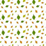 Autumn Seamless Pattern Background Colorful deja temporada de otoño del ornamento Fotos de archivo