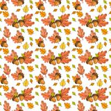Autumn Seamless Pattern Background Colorful Leaves Ornament Fall Season Stock Image