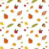Autumn Seamless Pattern Background Colorful Leaves Ornament Fall Season Stock Photos