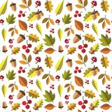 Autumn Seamless Pattern Background Yellow deja temporada de otoño del ornamento Fotografía de archivo