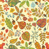 Autumn seamless pattern,Bright  leaves, branches, Royalty Free Stock Photos
