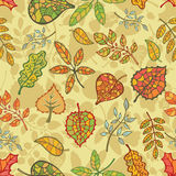Autumn seamless pattern.Bright  leaves, branches Stock Photo