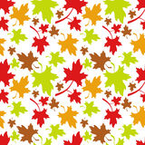 Autumn seamless pattern. With colorful maple leaves. Raster clip art Royalty Free Stock Photo