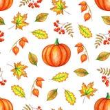 Autumn leaves, pumpkin and rowan berries. royalty free illustration