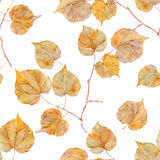 Autumn seamless pattern with leaf. Royalty Free Stock Photography