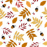 Autumn seamless pattern with leaves, acorns and rowans. Can be used for wallpapers, surface textures, textile, linen, kids cloth, pattern fills and more designs Royalty Free Stock Images