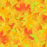 Autumn seamless pattern with leaves  EPS 10.  Royalty Free Stock Photography