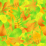 Autumn seamless pattern with leaves  EPS 10.  Stock Photos