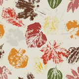 Autumn Seamless pattern with leaves Stock Images