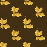 Autumn seamless pattern Royalty Free Stock Image