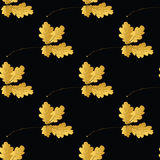 Autumn seamless pattern Stock Photography
