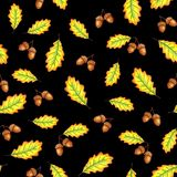 Oak leaves and nuts stock illustration